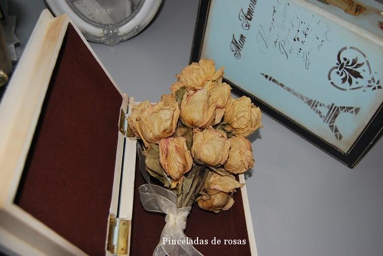 Caja- libro (3)